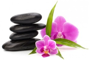 orchidea kaviccsal