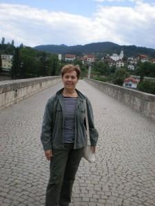 Visegradi híd 2013